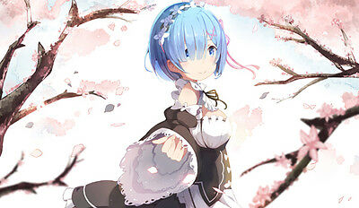 485 Re:ZERO -Starting Life In Another World PLAYMAT PLAYMAT FREE SHIPPING