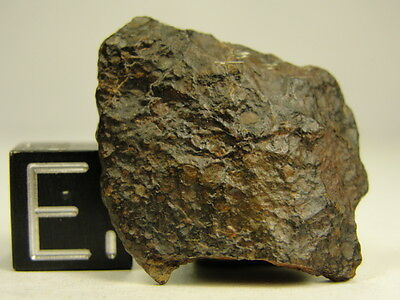NWA 7980 Official Meteorite - L3.10-W2 - G415-0012 - 3.69g COA - Extremely Rare