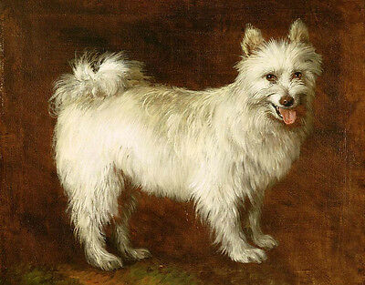 Art oil painting white dog nice animal standing handpainted canvas Hand painted