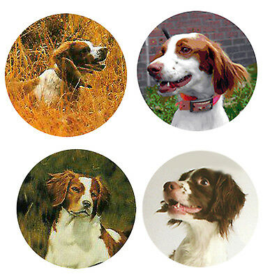 Brittany Magnets: 4 Cool Brittanys for your Fridge or Collection-A Great Gift