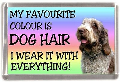 """Italian Spinone Dog Fridge Magnet """"My Favourite Colour is Dog Hair"""" by Starprint"""