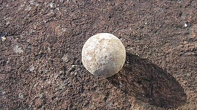 Revolutionary War Musket Ball located near Yorktown,VA