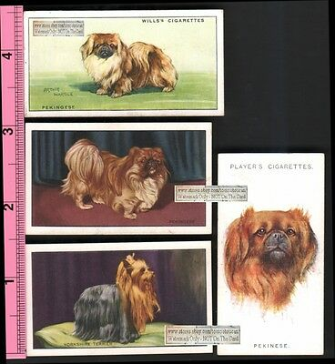 Pekingese Dogs 4 Different 75+ Y/O Ad Trade Cards