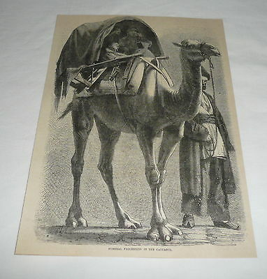 1879 magazine engraving ~ CAMEL FUNERAL PROCESSION IN THE CAUCASUS