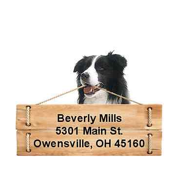 Border Collie return address labels die cut to shape of dog and sign