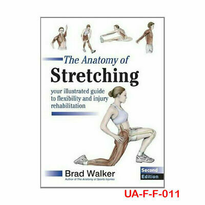 Brad Walker  The Anatomy of Stretching New Paperback 9781905367290