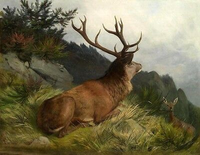 """Wholesale oil painting nice wild animals deer have a rest on the mountains 36"""""""