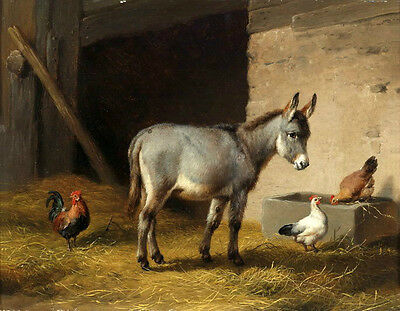Charming Oil painting lovely animals Small donkey with Poultry hen cock canvas A