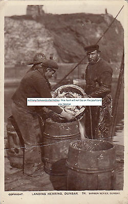 1917 Landing Herring In Dunbar Sanson Series Real Photo Social History Postcard