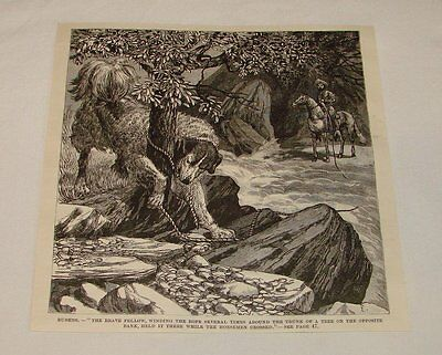 1887 magazine engraving ~ DOG HOLDING A ROPE FOR CROSSING RIVER