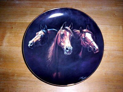 Entering The Light by Susie Morton Arabian Horse Plate Noble and Free Series