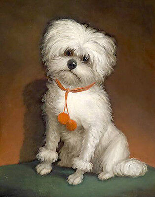 Hand painted Oil painting very beautiful little white dog sitting on ground art