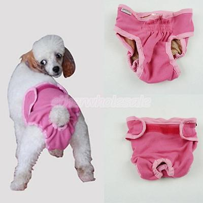 Femme Pet Dog Puppy Physiological Sanitary Short Underwear Diaper Pink M