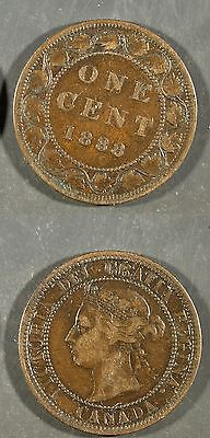 1888  Canada Large Cent  -  Solid VG    stk#1z20
