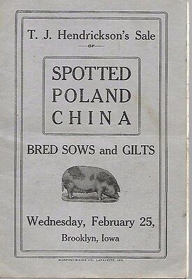 Spotted Poland China Sale Catalog T.J. Hendrickson's Brooklyn Iowa Early 1920's