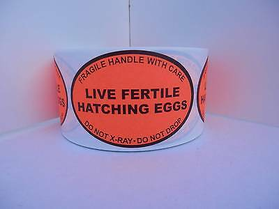 50 LIVE FERTILE HATCHING EGGS Handle/Care Do Not X-Ray Oval Label fluor red