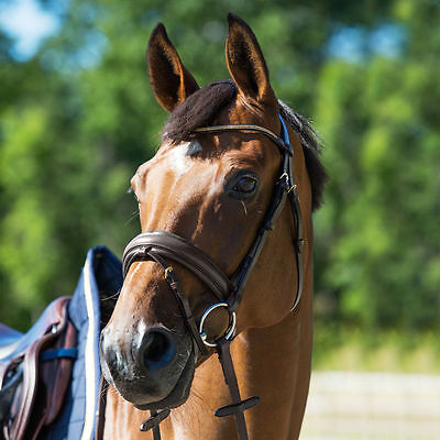 Horze Show English Leather Padded Caveson Bridle Headstall Crystals on Browband