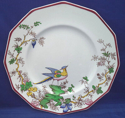 Dinner Plate Booths England THE TOR Silicon China Multicolored Bird Rare AS IS