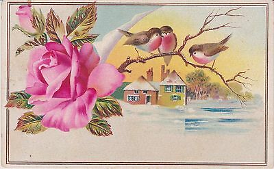 Rare Antique Lion Coffee Victorian Roses & Finches Trade Card Woolson Toledo Oh