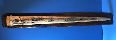Scrimshaw Swordfish Bill,1800's Steam Ships,light House,signed Freehand Original