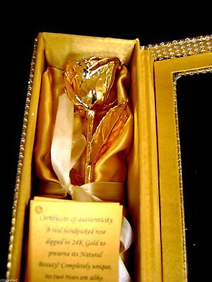 "ANNIVERSARY GIFT Gold Dipped 6"" Real Rose in Gold Egyptian Casket Design Box New"