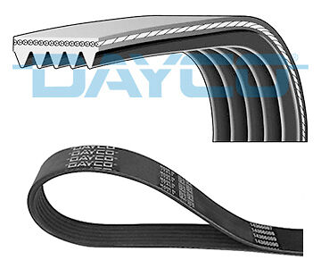 To Clear New - Dayco - V Ribbed Belt - 5Pk1355