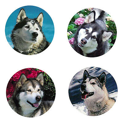 Alaskan Malamute Magnets : 4 Way-Cool Malamutes for your Collection-A Great Gift