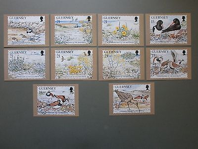 Set Of 10 X 1991 Guernsey Post Office Phq Postcards Nature Conservation