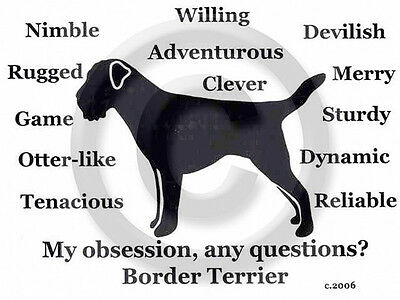 Border Terrier Dog Obsession? Our T-shirt  SALE GREY  XLarge only one-