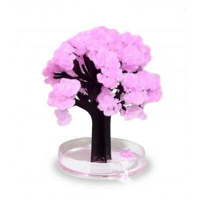 ThumbsUp! Magic Japanese Sakura Tree - Brand New!