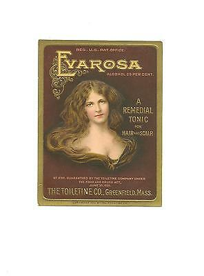 Evarosa Hair Tonic Vintage 1911 Label, The Toiletine Co. Greenfield, Mass
