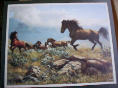 12 Wild Mustangs Horse Blank Note Cards by Persis Clayton Weirs   New