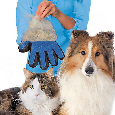 Gants Brosse Poils Chien Chat Nettoyage Pet True Touch doux efficace Grooming