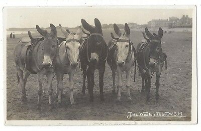 WESTON SUPER MARE The Weston Team of Donkeys, RP Postcard by Viner Posted 1912