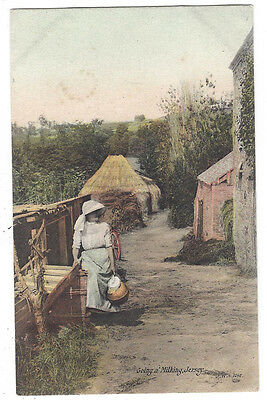 JERSEY Going a Milking, Old Postcard by Welch, Postally Used c1908