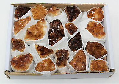 Wholesale Bulk 'A' Grade Citrine Crystal Clusters: 14-22 Piece Lot