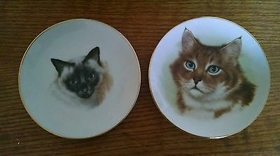 """6.25"""" Decorative Plate ~ 1988 Royal Yarmouth Gentle Cats Series"""
