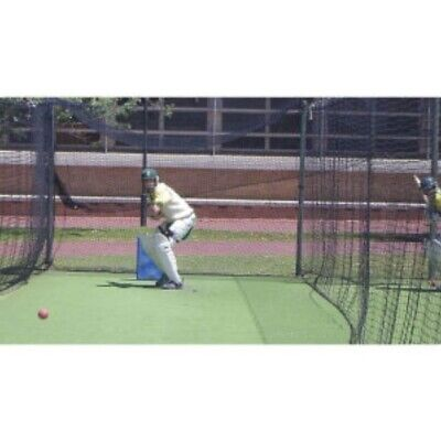 Buffalo Sports Heavy Weight Polyethylene Cricket Net - 60Ft X 10Ft (Crick111)