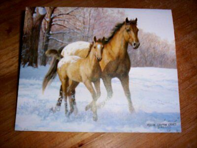 13 Appaloosa Mare & Foal Horse Blank Note Cards by Persis Clayton Weirs   NIB