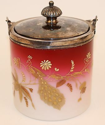Rare Victorian Meriden Peachblow Biscuit Jar With Gold Peacock Decor Signed!