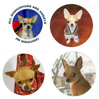Chihuahua Magnets:   4 Way-Cool Chihuahuas for your Collection-A Great Gift