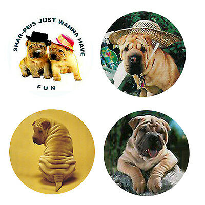 Shar Pei Magnets: 4 Cool Shar Pei for your Fridge or Collection-A Great Gift