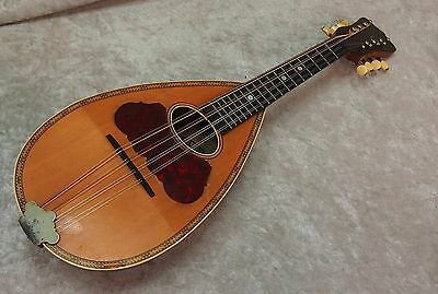 Washburn 1897 Model Bowl back mandolin with case