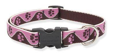 Lupine Tickled Pink Patterned Adjustable Dog Collar for Small/ Medium Dogs 3/4-i