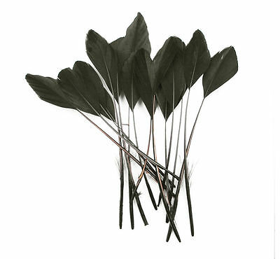 """FEATHERS BLACK Stripped Coupe x 10 pcs Millinery and Crafts 5-7"""""""