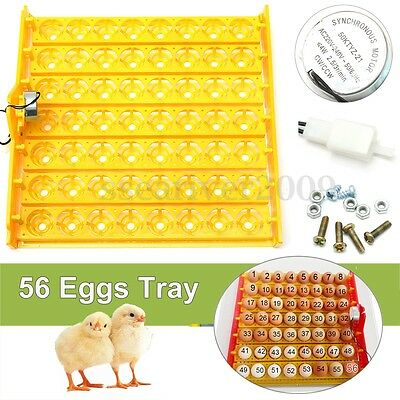 56 Eggs Turner Tray Automatic Egg Incubator Chicken Quail Duck With 110V/220V