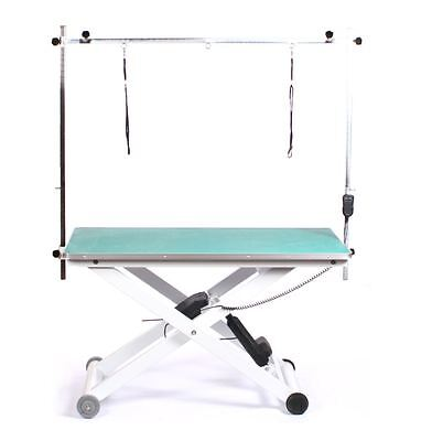 Electric professional hydraulic large dog pet cat adjustable grooming table
