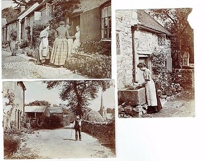 Old Artistic Albumen Photographs Edwardian Country Rural Scenes Antique C.1910