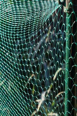 Ambassador Garden Net Ideal For Protection Of All Crops Plants Rot Proof Mesh