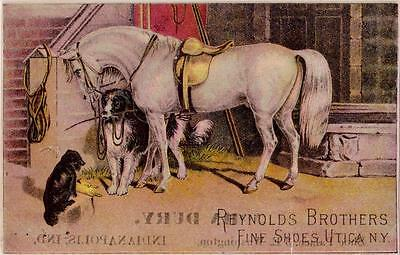 Dog Holding Horse's Rein Reynolds Brothers Fine Shoes Utica NY Dury Indianapolis